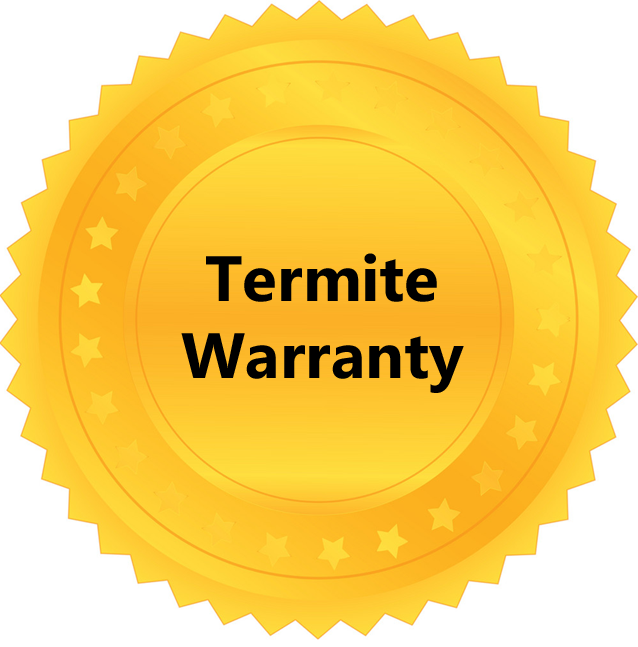 Termite Inspections at Buy It Right Home Inspections
